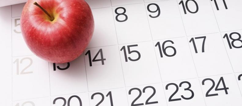 Annulation des cours – mercredi 13 février 2019